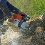 stump-removal-min